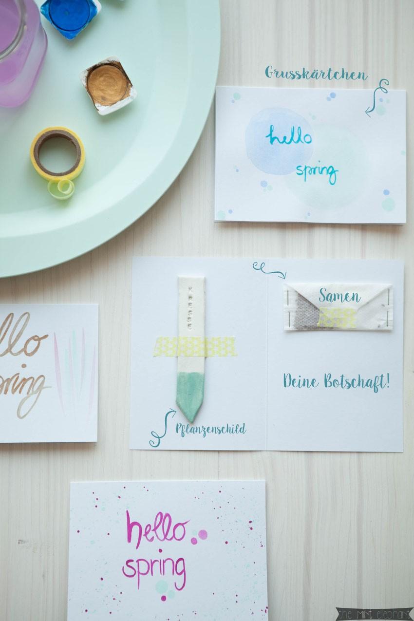 Grußkarten Hello Spring mit Pflanzenschild und Kräutersamen3