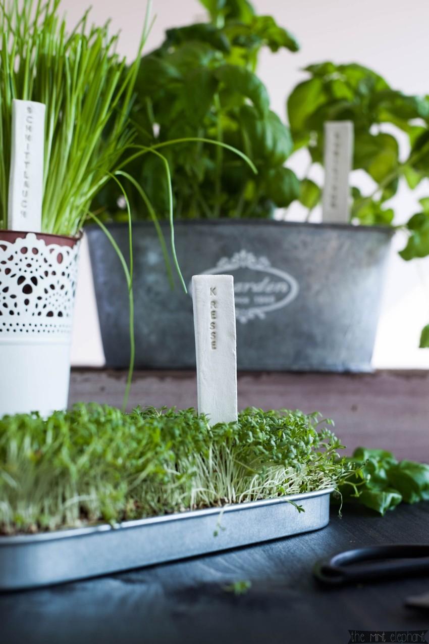 Pflanzenschild selbstgemacht in Kräutertopf